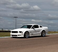 Jim Riehl's Saleen Mustang by Paul Danger Kile