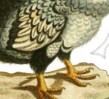 The Dodo - Extinct but Not Forgotten Sticker