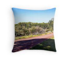 Bannack Road Throw Pillow