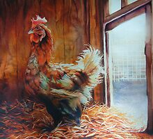 Rooster in the straw by Natasha Hodgson