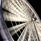 The Brisbane Wheel at Night by Larissa Dening