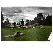 Natural Landscape - Melbourne Poster