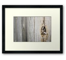 Tree in Fence Framed Print
