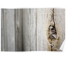 Tree in Fence Poster