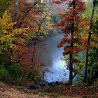 October Rain by NatureGreeting Cards ©ccwri