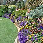Toowoomba Garden 4 by Graeme  Hyde