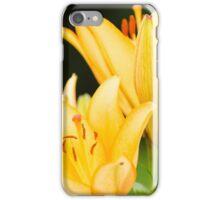 Lilium I iPhone Case/Skin
