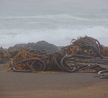 Monster Sea Serpents or Do I need glasses? by Joni  Rae