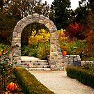 Halloween Arch by Rae Tucker