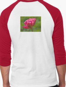Backlit Fluffy Tulip Men's Baseball ¾ T-Shirt