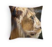 Lion, Adelaide Zoo Throw Pillow
