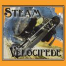 steam velocipede by dennis william gaylor