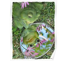 Narcissus the Frog Poster