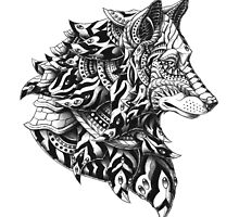 Wolf Profile by BioWorkZ