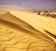 """Shifting Sands"" by Heather Thorning"