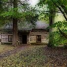 Old Cabin by Sandy Keeton