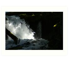 Big Creek Falls, Washington Art Print