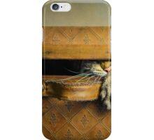 The stowaway iPhone Case/Skin