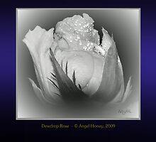 Dewdrop Rose by AngelHoney