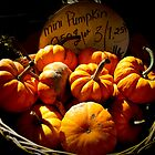 Fall Autumn Harvest Colors - Vignette Photo of Miniature Pumpkins in a Wicker Basket by Chantal PhotoPix