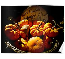 Fall Autumn Harvest Colors - Vignette Photo of Miniature Pumpkins in a Wicker Basket Poster