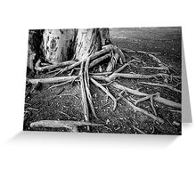 Root Spread Greeting Card