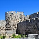 Medieval fortress of Rhodes. by FER737NG