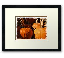 Fall Autumn Harvest - Large Pumpkins in a Row, Thankgiving Season Framed Print