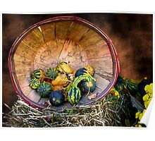 Pumpkins, Gourds & Squash - Wooden Bushel on Hay Bale - Fall Autumn Harvest Poster