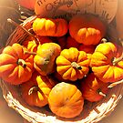 Dreamy Fall Autumn Harvest - Vignette Photo of Small Pumpkins in a Wicker Basket at the Market by Chantal PhotoPix