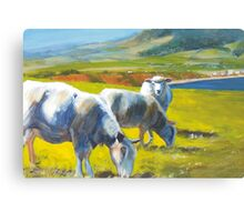 Shadowlands (detail) - Acrylic Painting of Sheep on a Cliff Canvas Print
