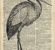 Stork Wild Bird Vintage Ink Illustration Encyclopedia Collage by DictionaryArt