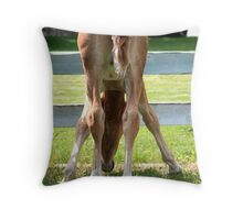 Straw in your Hair Throw Pillow