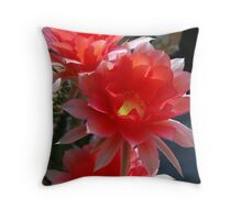 Late Season Echinopsis Throw Pillow