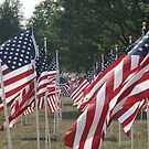 Field Of Flags by Dean Mucha
