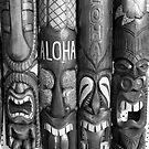 Aloha by AnalogSoulPhoto