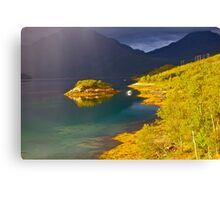 7 ★★★★★. Lofoten Wonders (2011) by Brown Sugar . Views (590) favorited by (2) thank you Canvas Print
