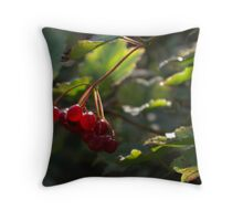 Berry Red Throw Pillow