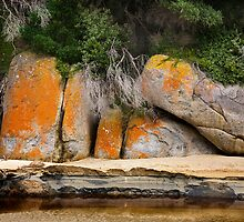 Rock formation - Tidal River by Hans Kawitzki