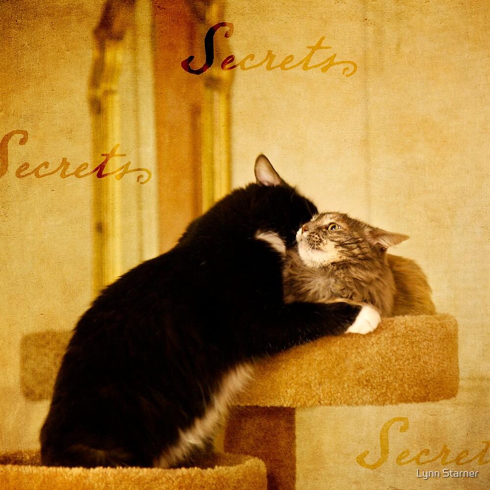 Cat Secrets by Lynn Starner