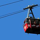 Airtram at Hell's Gate Fraser Valley by MaluC