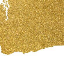 Gold Washington state map Sticker