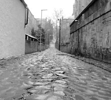 Slick Cobblestone of Glasgow by Jessica Tamler