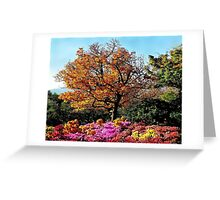 The paints of fall Greeting Card