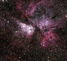 Eta Carina Nebula by astroniko