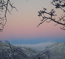 Snow In The San Bernardino Mountains by Bearie23