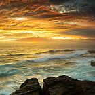 The Platform - Long Bay by Mark  Lucey