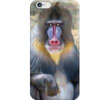 Mandrill II iPhone Case/Skin