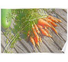 Garden Carrots Poster