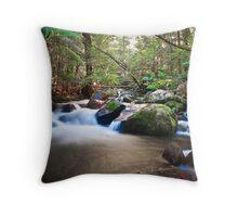 Taggerty Creek Cascades - Victoria Throw Pillow